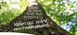 Guide environnemental de la filière forêt bois bretonne