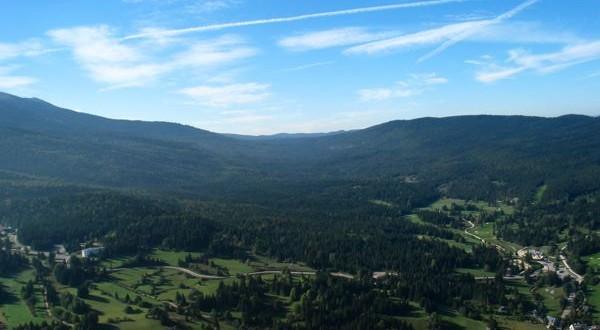 Paysage montagneux forêt