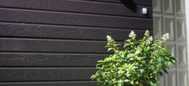 photo-bardage-bois-gris-foncé-pot-de-fleur-vert