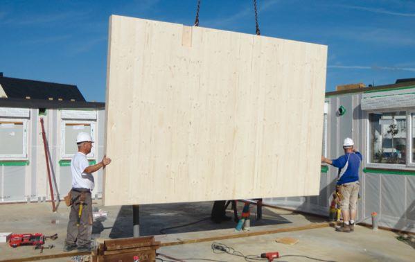 panneau bois woodsurfer. Black Bedroom Furniture Sets. Home Design Ideas