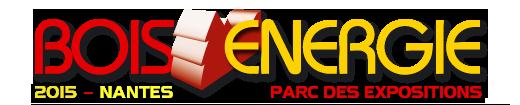 Logo salon Bois énergie 2015